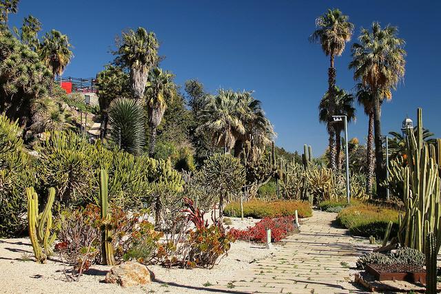 Jardín Mossen Costa i Llobera