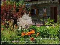 Foto 2 de Casa Rural El Carzal
