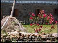 Foto 4 de Casa Rural El Carzal