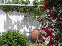 Foto 7 de Casa Rural San Blas