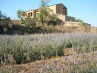 Foto 1 de Casa Rural El Forner
