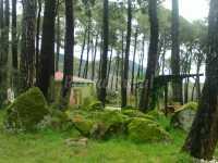 Foto 1 de Paraiso Del Tietar