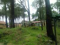Foto 2 de Paraiso Del Tietar