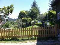 Foto 2 de La Pacheca Chica