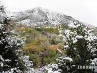 Foto 2 de Casa Rural  Petro