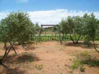 Foto 9 de Casas Rurales El Palomar