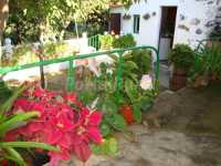 Foto 3 de Casa Rural Isabel Vilaflor