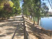 Alrededores: Paseo del Parque, junto al río