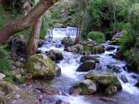 Foto 8 de Casa Rural La Escuela