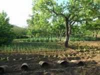 Foto 5 de Vivienda Rural La Lieva
