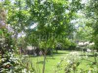 Foto 3 de Taray Botánico