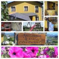 Foto 1 de Casa Pachona Apartamentos Rurales
