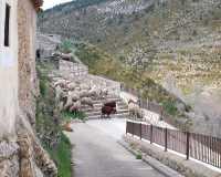 Foto 3 de Casa Campestre Las Endrinas