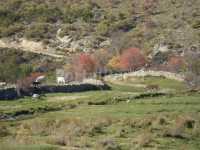 Foto 25 de Casa La Piedra Del Mediodia De Gredos