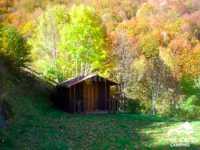 Foto 6 de Camping El Cares Picos De Europa
