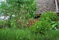 Foto 9 de Casa Rural Francisco Mayo