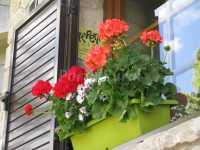 Foto 3 de Alpensholidays Les Pallisses