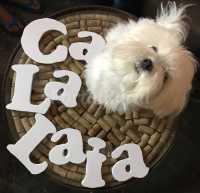 Foto 7 de Ca La Laia