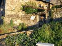 Foto 1 de La Casita Del Tejo