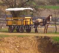 Foto 5 de Casa Rural Abánades