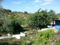 Foto 3 de Refugio Villa Isabel