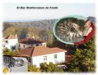 Foto 2 de Cortijo Rural Maria