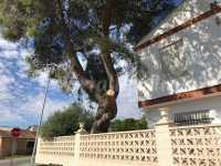 Foto 2 de Casa Rural Altura