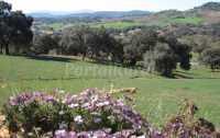Foto 10 de Casa Azahar. El Bosque