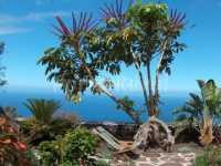 Foto 2 de Casa Los Mangos