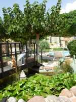 Foto 3 de Casa Rural La Marquesiana