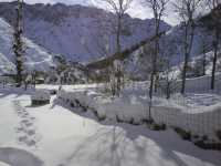 Foto 6 de Casa Rural Peñalaza