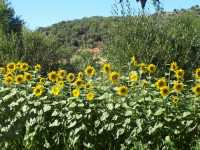 Foto 10 de Casa Rural La Zapateta