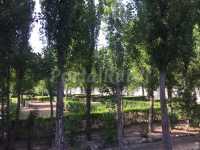 Foto 2 de Camping Las Veredas