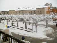 Verdu con nieve