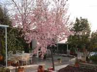 Foto 5 de Casa Rural Miazul