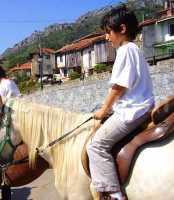 Foto 7 de Casa Rural  Felechu