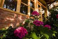 Foto 16 de Casa Rural  Roseta