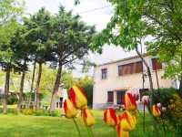 Foto 3 de Casa Rural Los Laureles