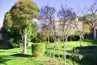 Foto 8 de Casa Rural Los Laureles