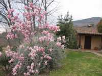 Foto 5 de Hotel Rural El Camino