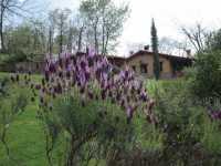 Foto 6 de Hotel Rural El Camino