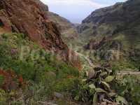 Foto 1 de Casa Cueva Ca´juani