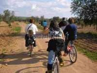 Foto 5 de Casa Rural Crisalva