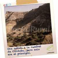 Foto 5 de Cortijo Los Petronilos