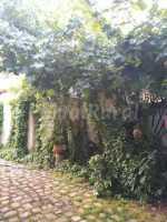 Foto 2 de Casa Rural El Sueño De Lucrecia