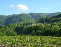 Foto 4 de Casa Rural Landarbide Zahar