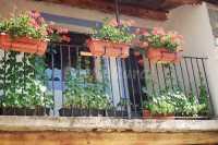 Foto 1 de Casa Rural Araceli