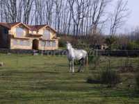 Foto 5 de Casa Rural Arroyoriquejo