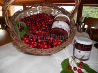 Foto 10 de Casa Rural  Insol