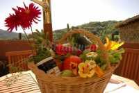 Foto 11 de Casa Rural  Insol